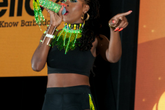 crop-over-sweet-soca-and-party-Monarch-Semi-154