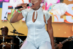 crop-over-sweet-soca-and-party-Monarch-Semi-161
