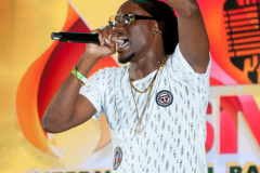 crop-over-sweet-soca-and-party-Monarch-Semi-180