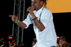 crop-over-sweet-soca-and-party-Monarch-Semi-60