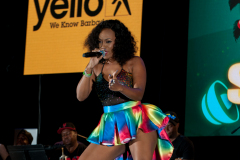 crop-over-sweet-soca-and-party-Monarch-Semi-65