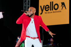 crop-over-sweet-soca-and-party-Monarch-Semi-79