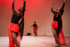 NIFCA-Tribute-Richild-Springer-Dance-105